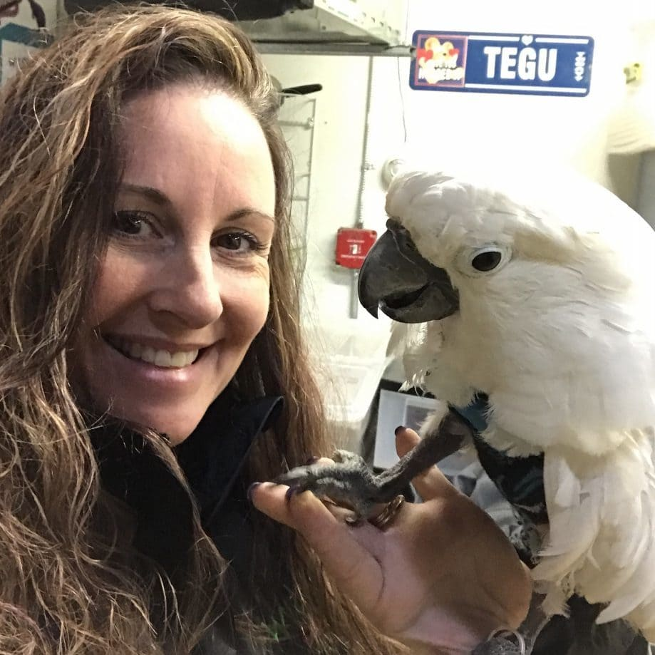 "Jenn holding ""Big Bird,"" 10-year old Cockatoo"